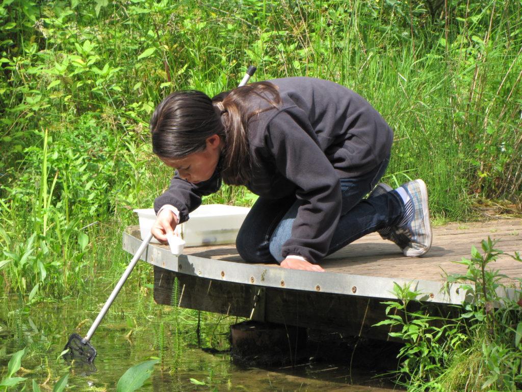 Schülerin untersucht ein Gewässer